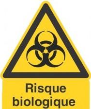 Initiation à la prévention des maladies liées aux agents biologiques
